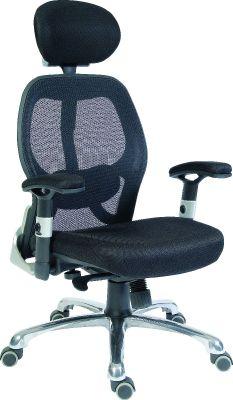 Designer Mesh Task Chair