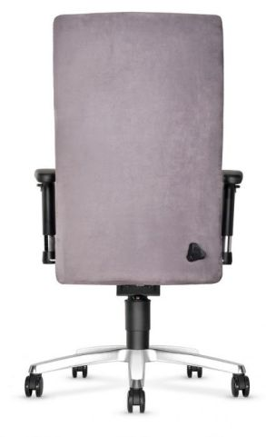Trinity Ergonomic Chair With A Large Back