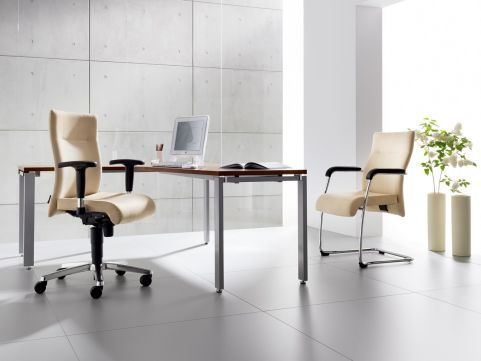 Trinity Mid Back Task Chair And Visitors Chair