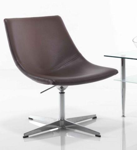 Curveo Designer Tub Chair