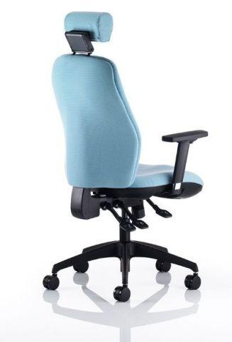 Star Ergonomic Chair Rear View