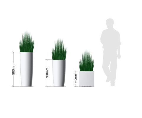 Wild Grasses Plant In Pot Planters