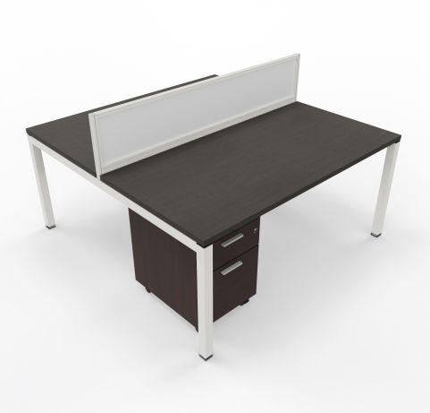 Two Person Desk With Underdesk Pedestal Unit
